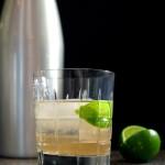 Stir and strain southeastasiantonic-gin-1