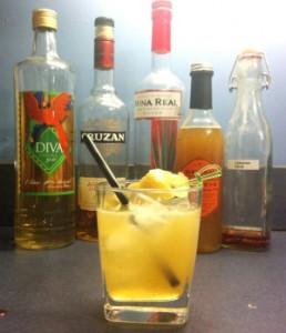 drinkscd - ginger-pilot
